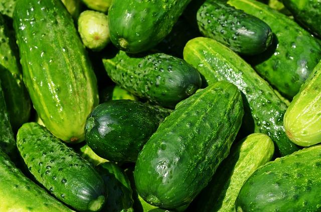 Betriebsbesichtigung bei Obst- und Gemüsebau Heinrich